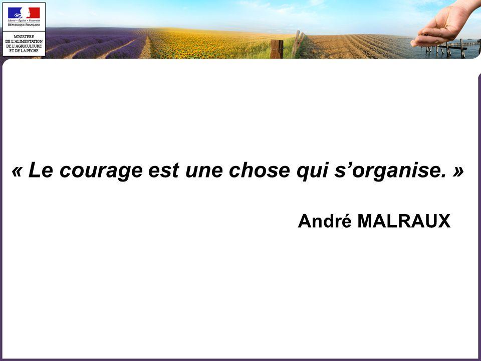 « Le courage est une chose qui sorganise. » André MALRAUX