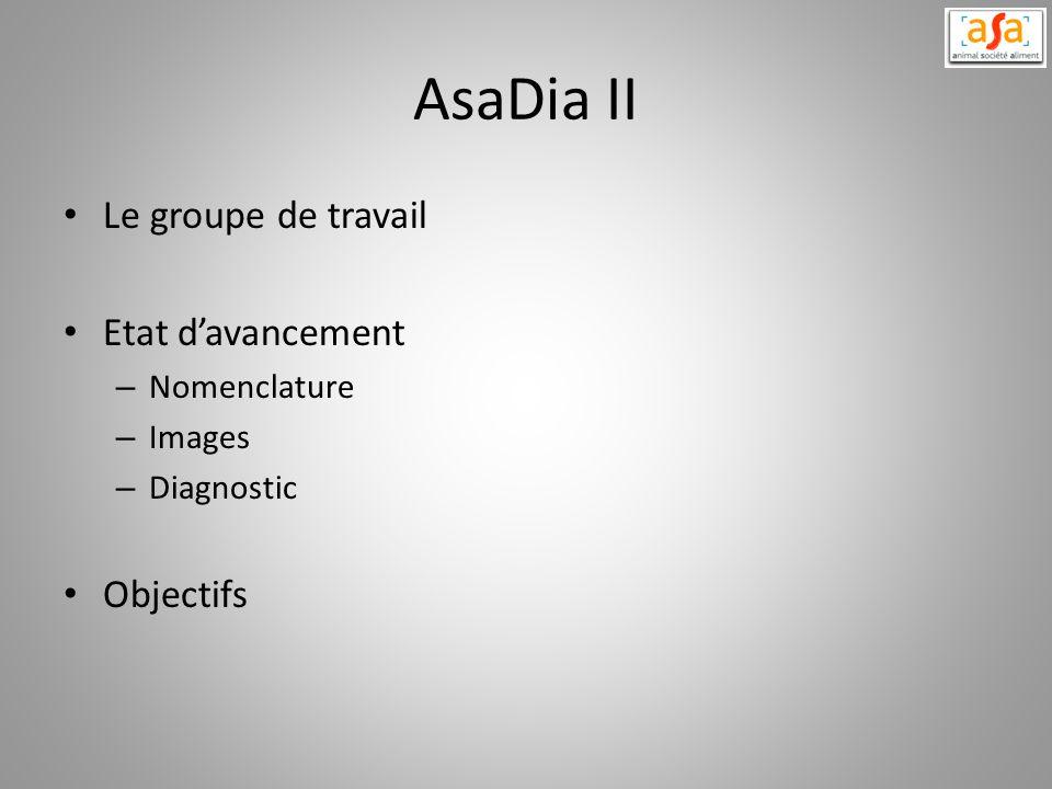 AsaDia II Le groupe de travail Etat davancement – Nomenclature – Images – Diagnostic Objectifs