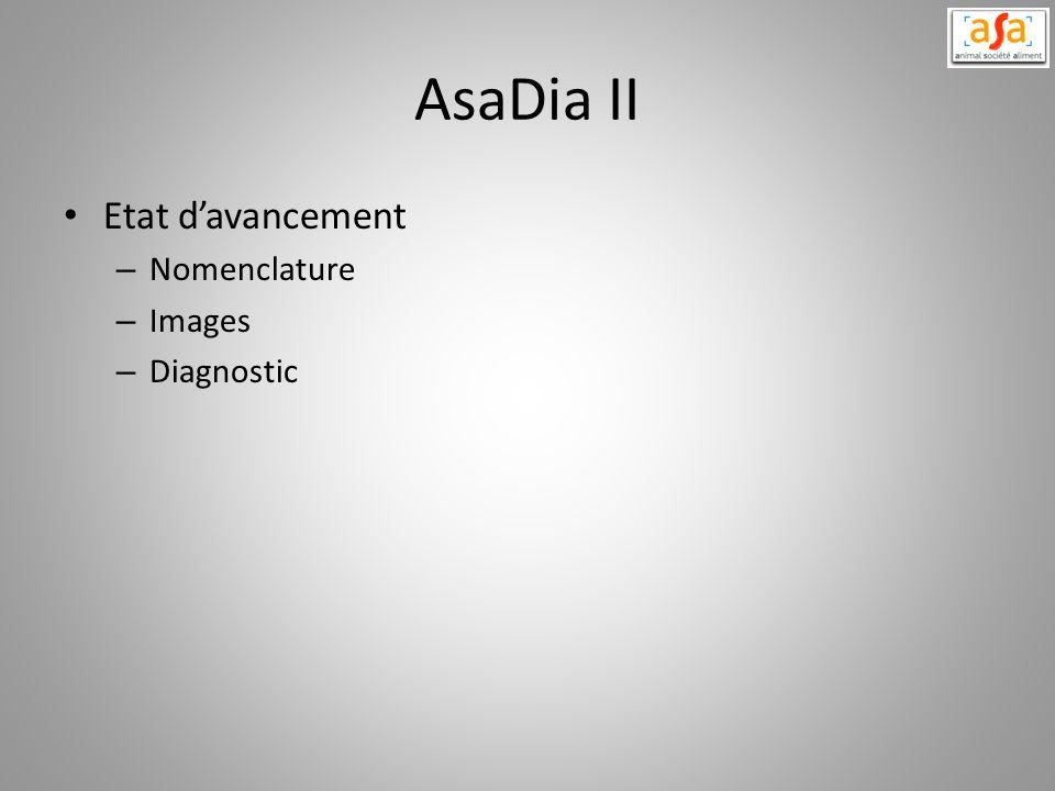AsaDia II Etat davancement – Nomenclature – Images – Diagnostic