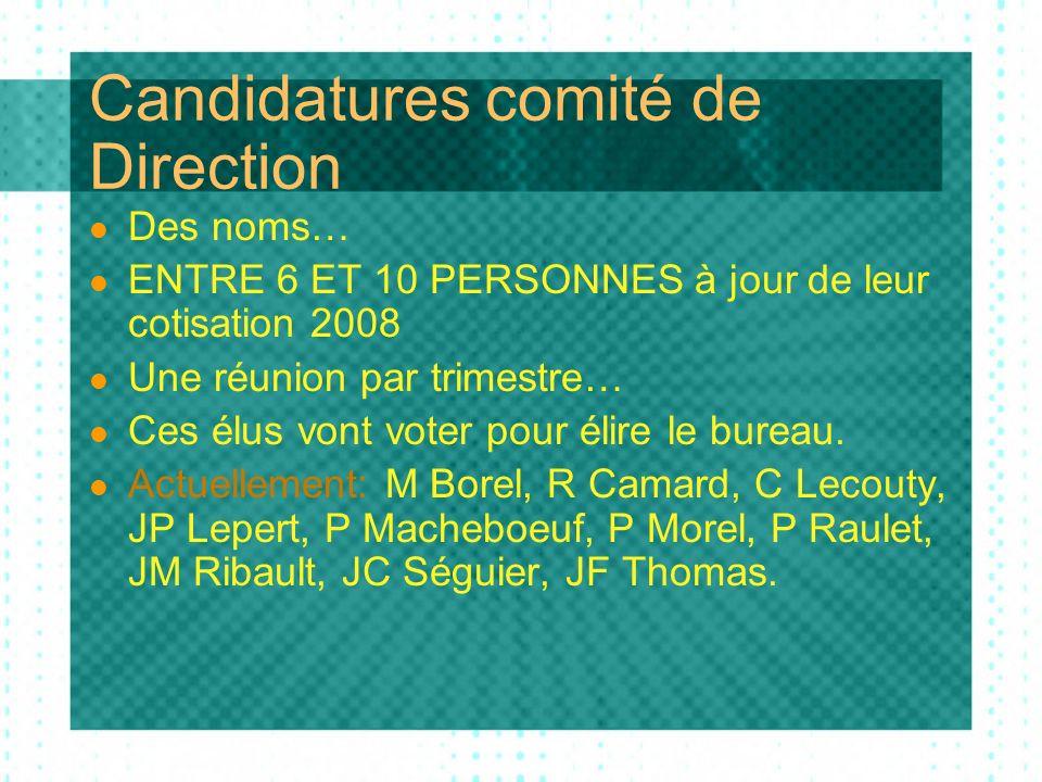 Candidatures comité de Direction Des noms… ENTRE 6 ET 10 PERSONNES à jour de leur cotisation 2008 Une réunion par trimestre… Ces élus vont voter pour élire le bureau.