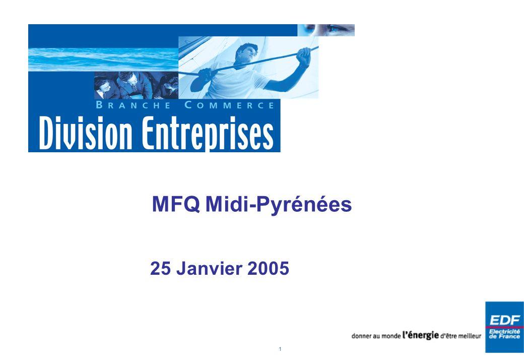 1 MFQ Midi-Pyrénées 25 Janvier 2005