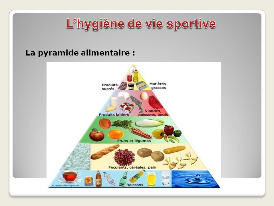 La pyramide alimentaire :