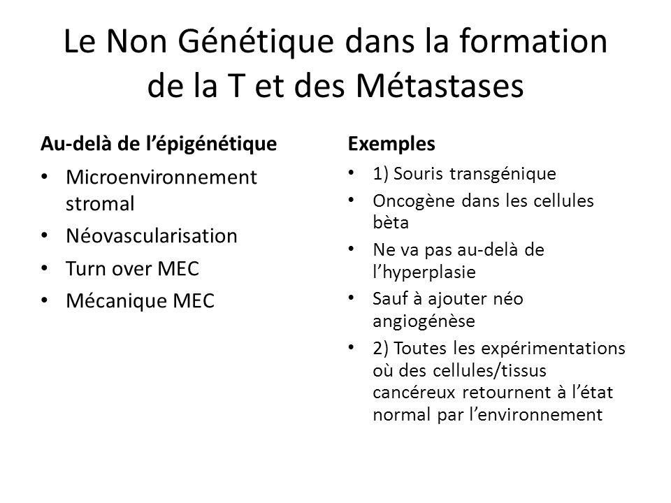 Le Non Génétique dans la formation de la T et des Métastases Au-delà de lépigénétique Microenvironnement stromal Néovascularisation Turn over MEC Méca