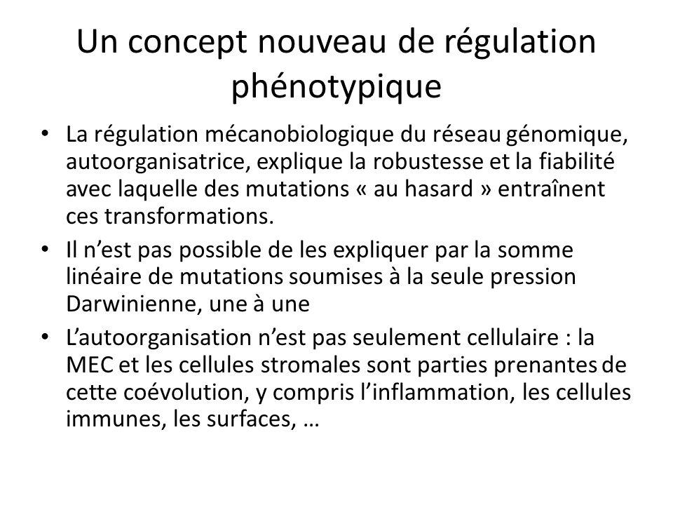Un concept nouveau de régulation phénotypique La régulation mécanobiologique du réseau génomique, autoorganisatrice, explique la robustesse et la fiab