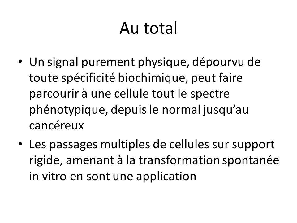 Au total Un signal purement physique, dépourvu de toute spécificité biochimique, peut faire parcourir à une cellule tout le spectre phénotypique, depu