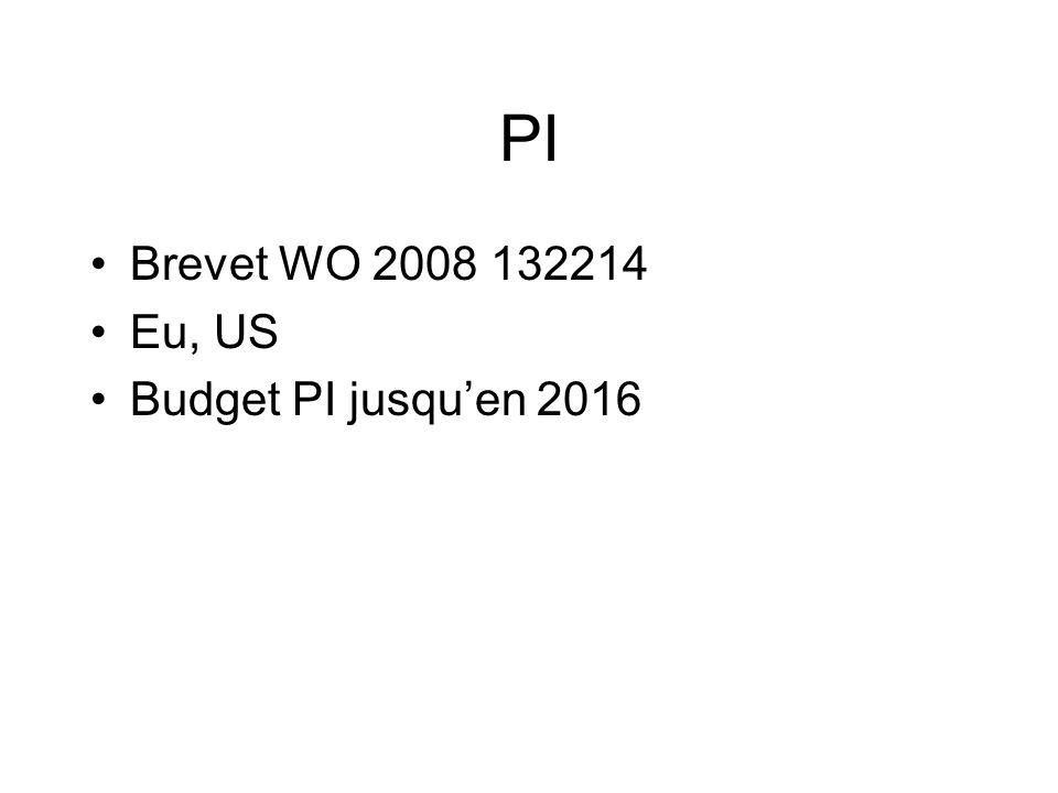 PI Brevet WO 2008 132214 Eu, US Budget PI jusquen 2016