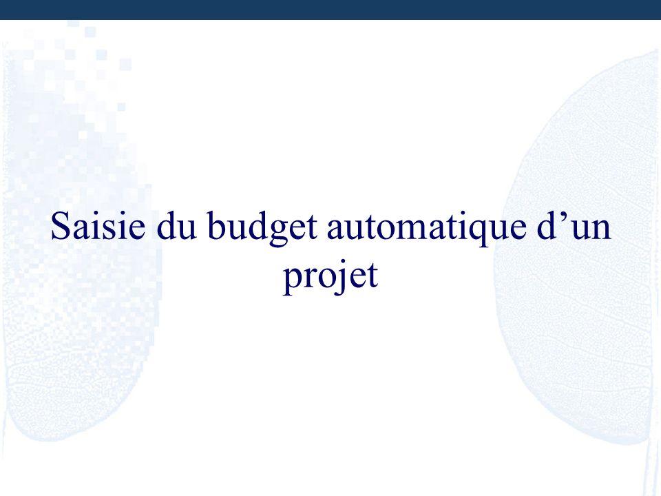 Saisie du budget automatique dun projet