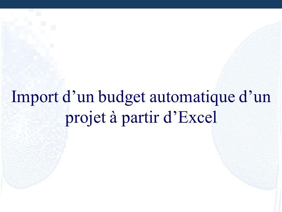Import dun budget automatique dun projet à partir dExcel