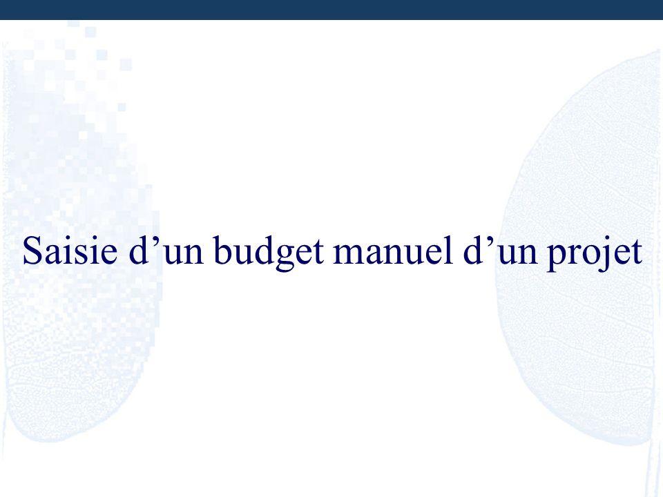 Saisie dun budget manuel dun projet