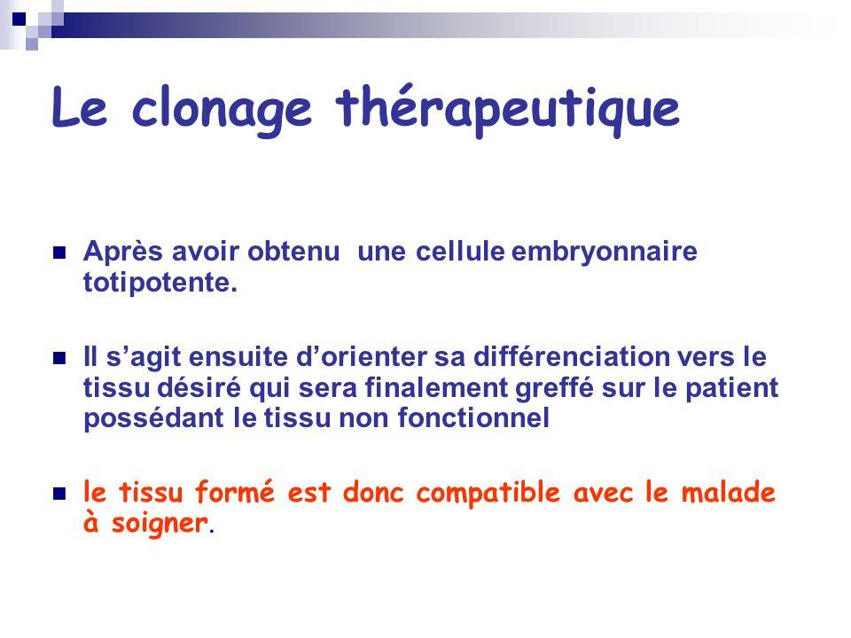 Le clonage thérapeutique Après avoir obtenu une cellule embryonnaire totipotente. Il sagit ensuite dorienter sa différenciation vers le tissu désiré q