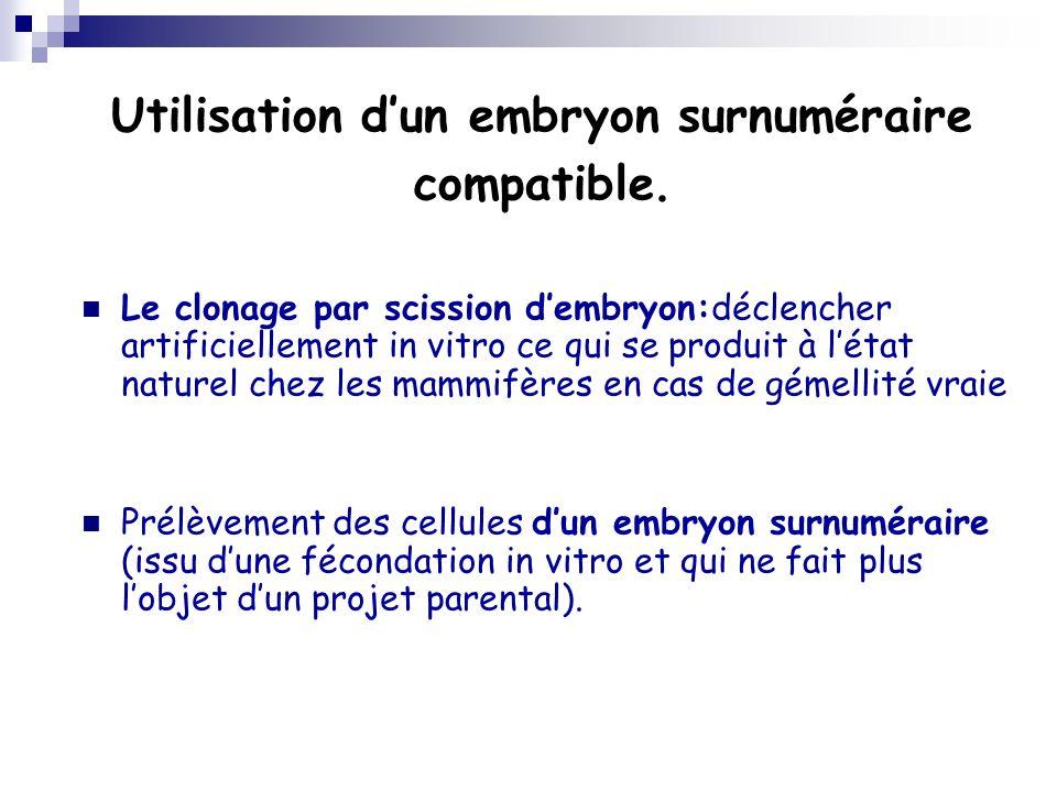 Utilisation dun embryon surnuméraire compatible. Le clonage par scission dembryon:déclencher artificiellement in vitro ce qui se produit à létat natur