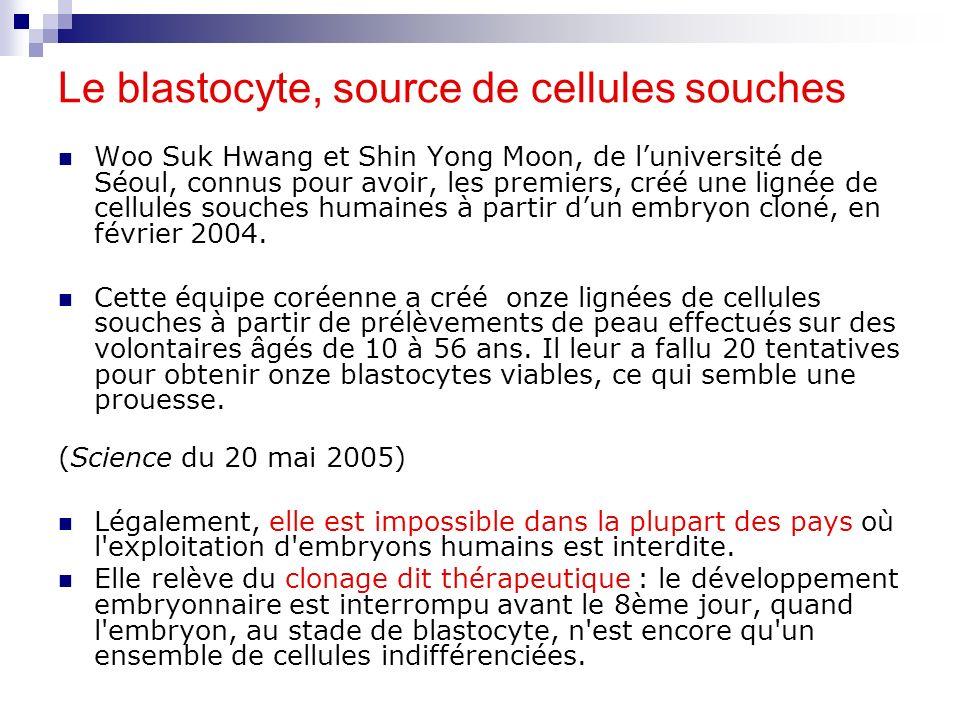 Le blastocyte, source de cellules souches Woo Suk Hwang et Shin Yong Moon, de luniversité de Séoul, connus pour avoir, les premiers, créé une lignée d