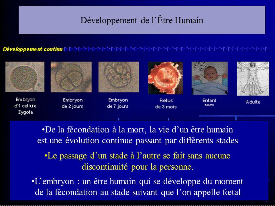 Développement de lÊtre Humain De la fécondation à la mort, la vie dun être humain est une évolution continue passant par différents stades Le passage