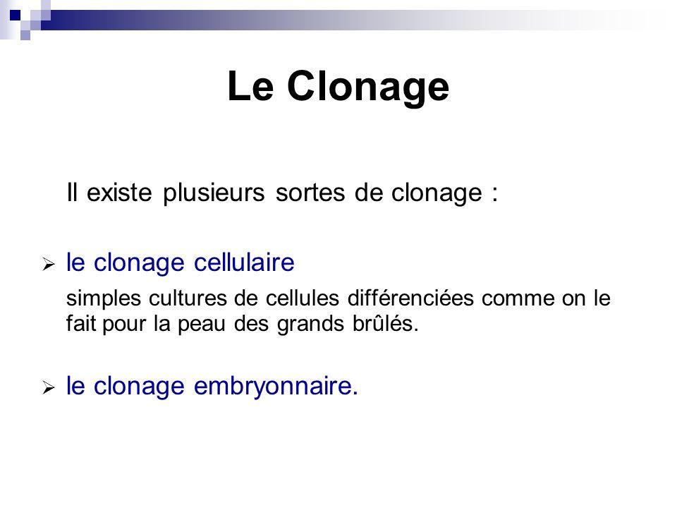 Le Clonage Il existe plusieurs sortes de clonage : le clonage cellulaire simples cultures de cellules différenciées comme on le fait pour la peau des