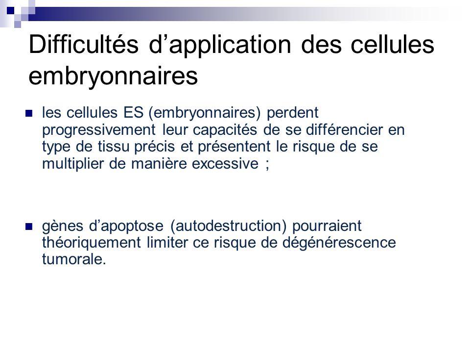 Difficultés dapplication des cellules embryonnaires les cellules ES (embryonnaires) perdent progressivement leur capacités de se différencier en type