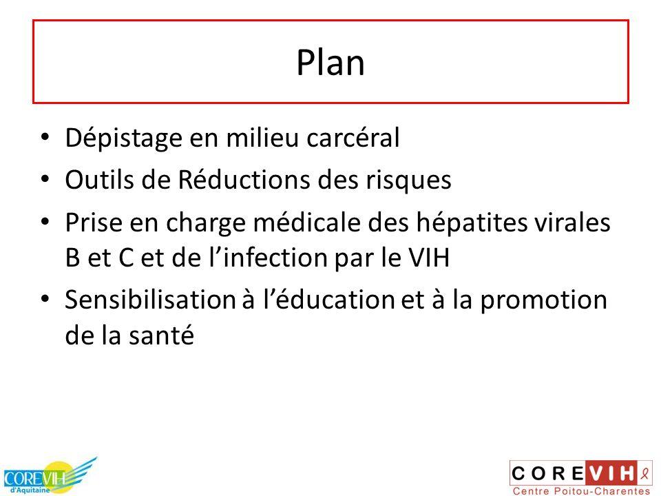 Plan Dépistage en milieu carcéral Outils de Réductions des risques Prise en charge médicale des hépatites virales B et C et de linfection par le VIH S
