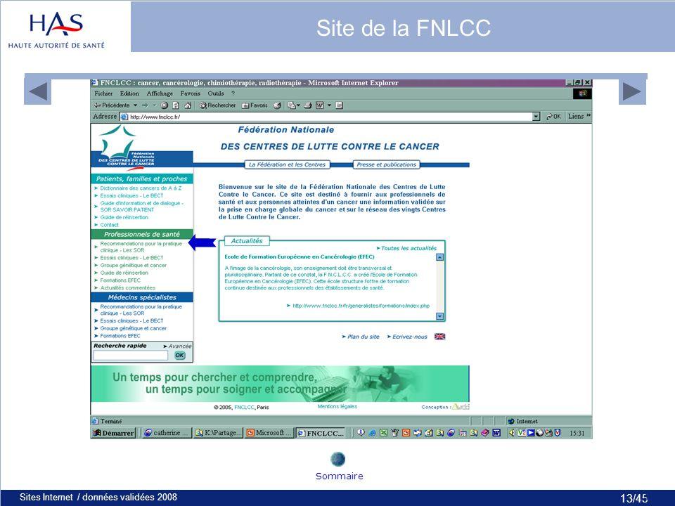 13/45 Sites Internet / données validées 200813 Site de la FNLCC Sommaire