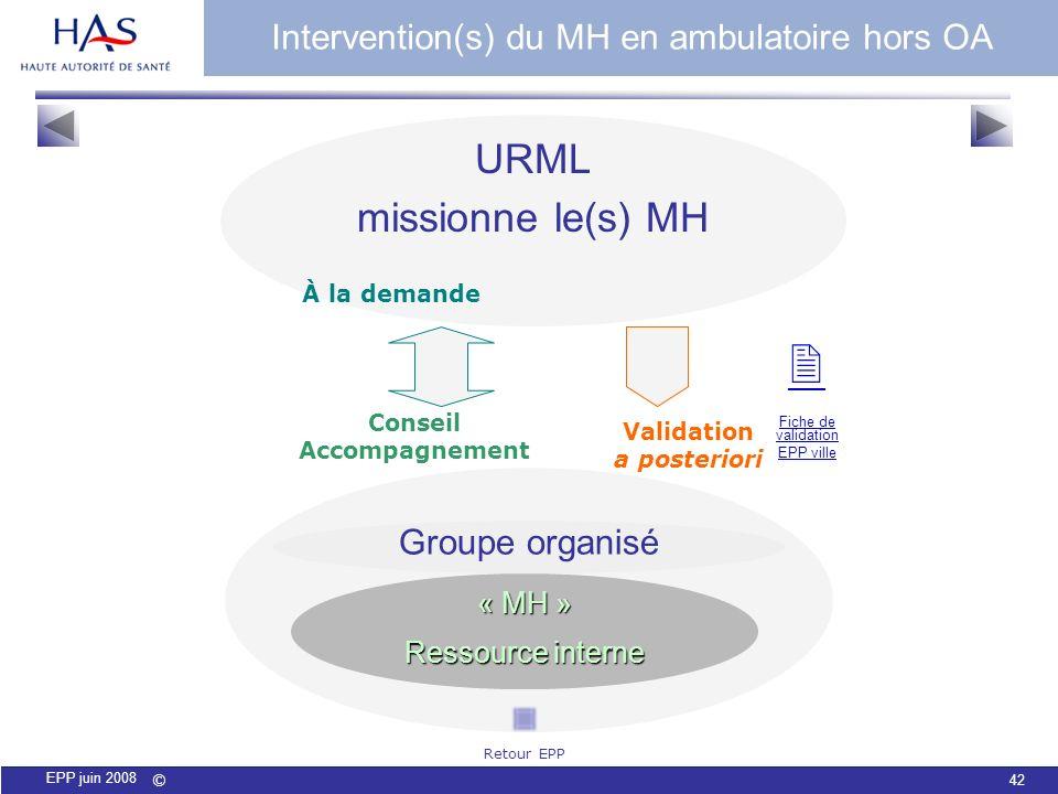 © 42 EPP juin 2008 Groupe organisé « MH » Ressource interne Conseil Accompagnement URML missionne le(s) MH Validation a posteriori À la demande Interv