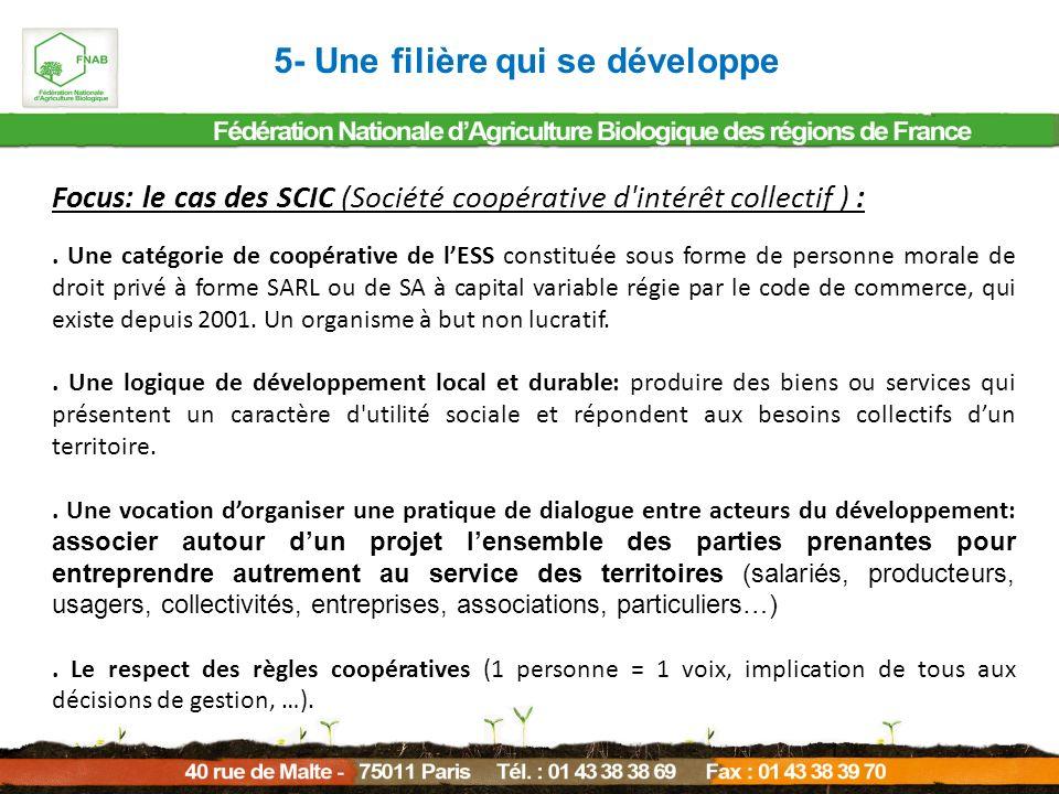 Focus: le cas des SCIC (Société coopérative d'intérêt collectif ) :. Une catégorie de coopérative de lESS constituée sous forme de personne morale de