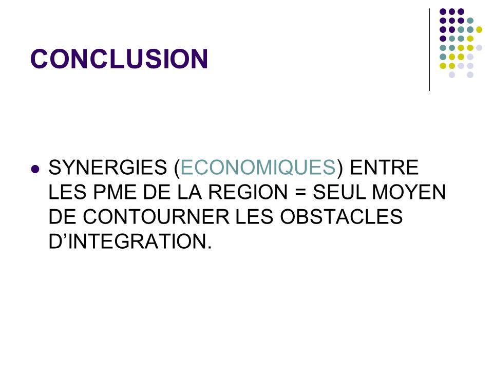 CONCLUSION SYNERGIES (ECONOMIQUES) ENTRE LES PME DE LA REGION = SEUL MOYEN DE CONTOURNER LES OBSTACLES DINTEGRATION.