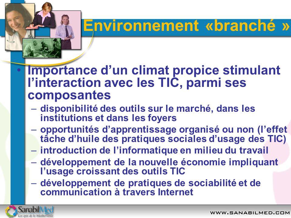 Environnement «branché » Importance dun climat propice stimulant linteraction avec les TIC, parmi ses composantes –disponibilité des outils sur le mar