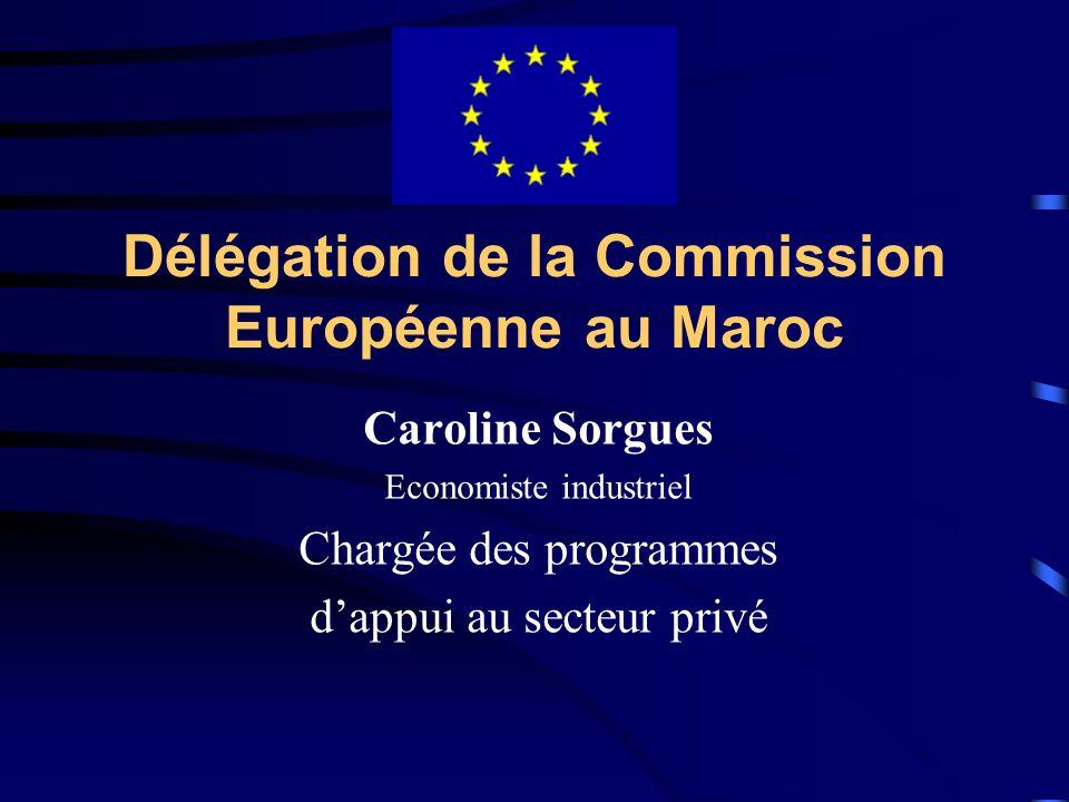 Délégation de la Commission Européenne au Maroc Caroline Sorgues Economiste industriel Chargée des programmes dappui au secteur privé