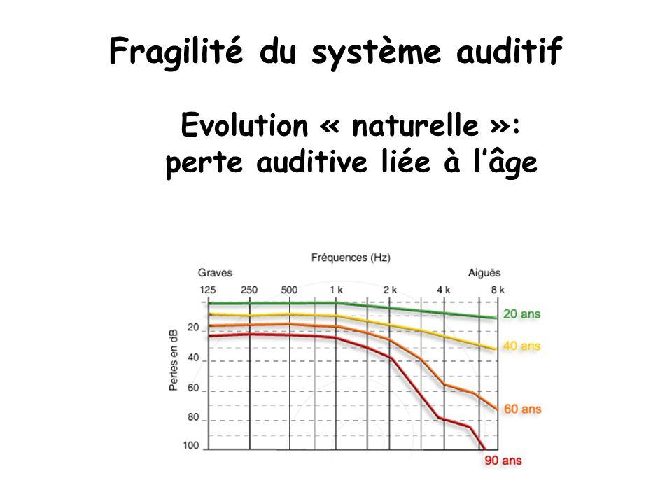 Fragilité du système auditif Evolution « naturelle »: perte auditive liée à lâge