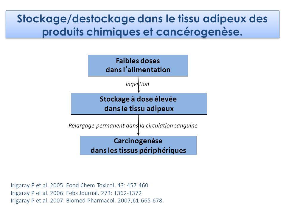 Faibles doses dans lalimentation Stockage à dose élevée dans le tissu adipeux Carcinogenèse dans les tissus périphériques Ingestion Relargage permanen