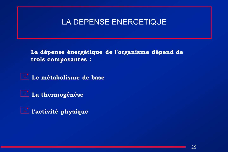 25 LA DEPENSE ENERGETIQUE La dépense énergétique de l'organisme dépend de trois composantes : Le métabolisme de base La thermogénèse l'activité physiq