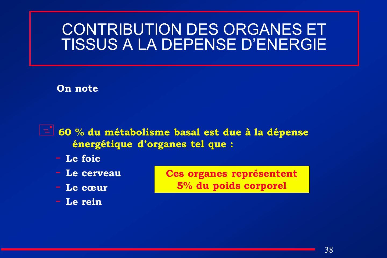 38 CONTRIBUTION DES ORGANES ET TISSUS A LA DEPENSE DENERGIE On note 60 % du métabolisme basal est due à la dépense énergétique dorganes tel que : - Le