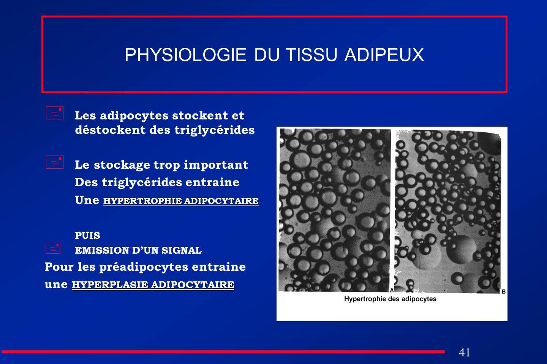 41 PHYSIOLOGIE DU TISSU ADIPEUX Les adipocytes stockent et déstockent des triglycérides Le stockage trop important Des triglycérides entraine HYPERTRO