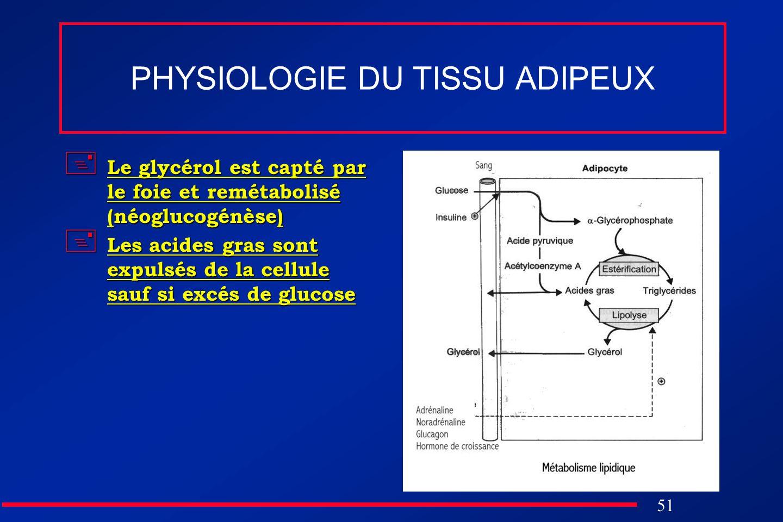 51 PHYSIOLOGIE DU TISSU ADIPEUX Le glycérol est capté par le foie et remétabolisé (néoglucogénèse) Le glycérol est capté par le foie et remétabolisé (
