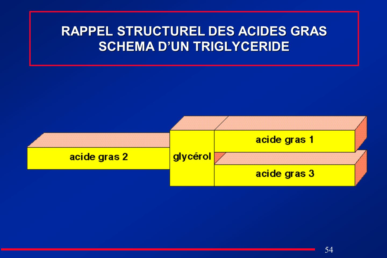 54 RAPPEL STRUCTUREL DES ACIDES GRAS SCHEMA DUN TRIGLYCERIDE
