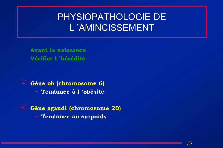 55 PHYSIOPATHOLOGIE DE L AMINCISSEMENT Avant la naissance Vérifier l hérédité Gêne ob (chromosome 6) - Tendance à l obésité Gêne agandi (chromosome 20