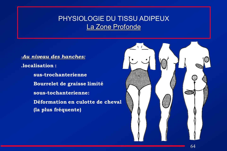 64 La Zone Profonde PHYSIOLOGIE DU TISSU ADIPEUX La Zone Profonde -Au niveau des hanches:.localisation : sus-trochanterienne Bourrelet de graisse limi