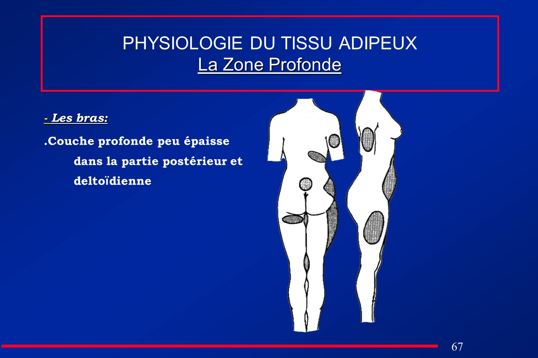 67 La Zone Profonde PHYSIOLOGIE DU TISSU ADIPEUX La Zone Profonde - Les bras:.Couche profonde peu épaisse dans la partie postérieur et delto ï dienne