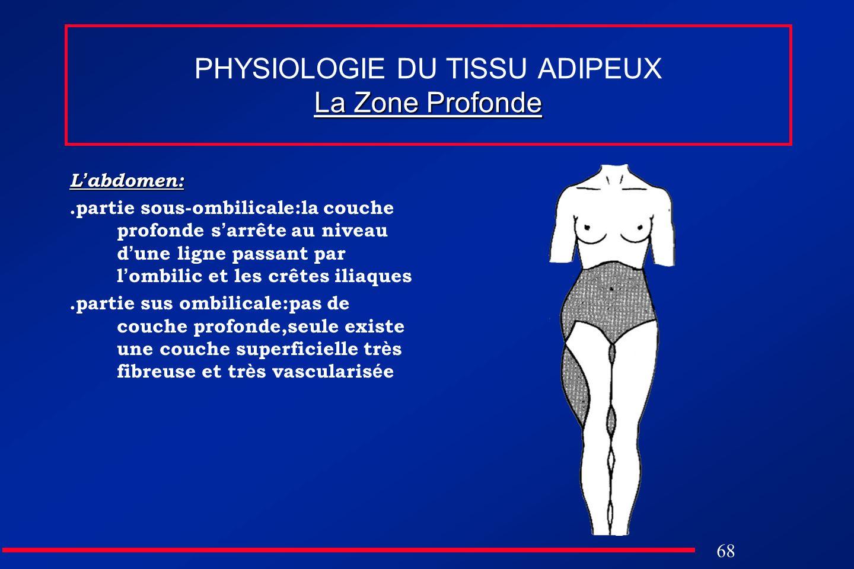 68 La Zone Profonde PHYSIOLOGIE DU TISSU ADIPEUX La Zone Profonde L abdomen:.partie sous-ombilicale:la couche profonde s arrête au niveau d une ligne