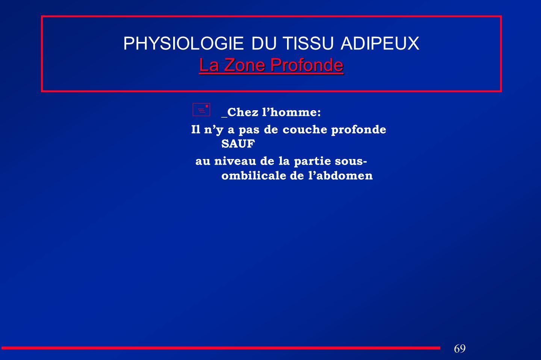 69 La Zone Profonde PHYSIOLOGIE DU TISSU ADIPEUX La Zone Profonde _Chez lhomme: Il ny a pas de couche profonde SAUF au niveau de la partie sous- ombil