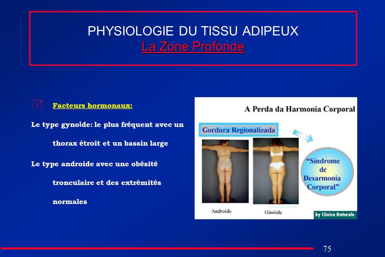 75 La Zone Profonde PHYSIOLOGIE DU TISSU ADIPEUX La Zone Profonde Facteurs hormonaux: Le type gyno î de: le plus fr é quent avec un thorax é troit et
