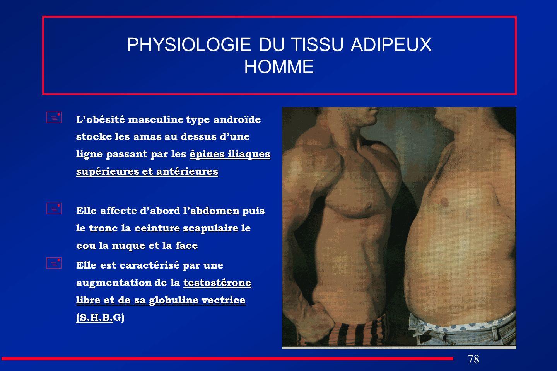 78 PHYSIOLOGIE DU TISSU ADIPEUX HOMME épines iliaques supérieures et antérieures Lobésité masculine type androïde stocke les amas au dessus dune ligne