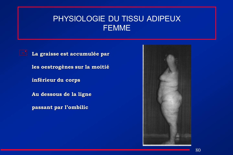 80 PHYSIOLOGIE DU TISSU ADIPEUX FEMME La graisse est accumulée par les oestrogènes sur la moitié inférieur du corps La graisse est accumulée par les o