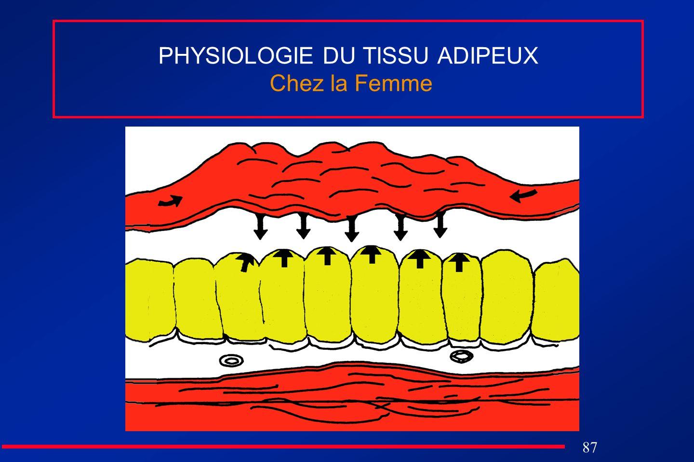 87 PHYSIOLOGIE DU TISSU ADIPEUX Chez la Femme