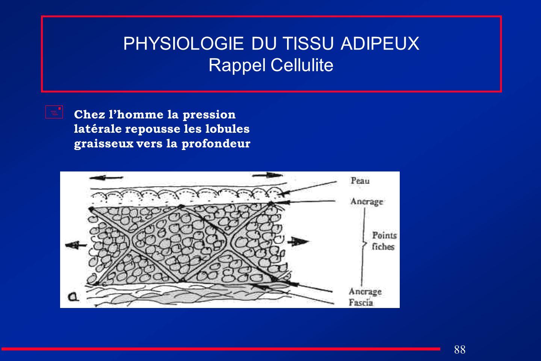 88 PHYSIOLOGIE DU TISSU ADIPEUX Rappel Cellulite Chez lhomme la pression latérale repousse les lobules graisseux vers la profondeur