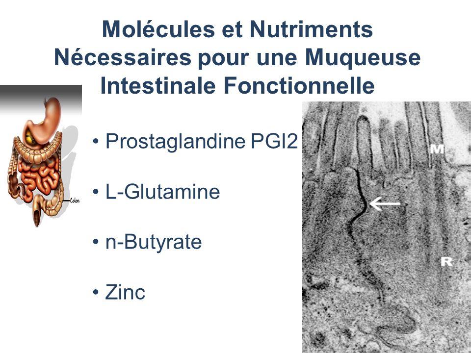 Molécules et Nutriments Nécessaires pour une Muqueuse Intestinale Fonctionnelle Prostaglandine PGI2 L-Glutamine n-Butyrate Zinc