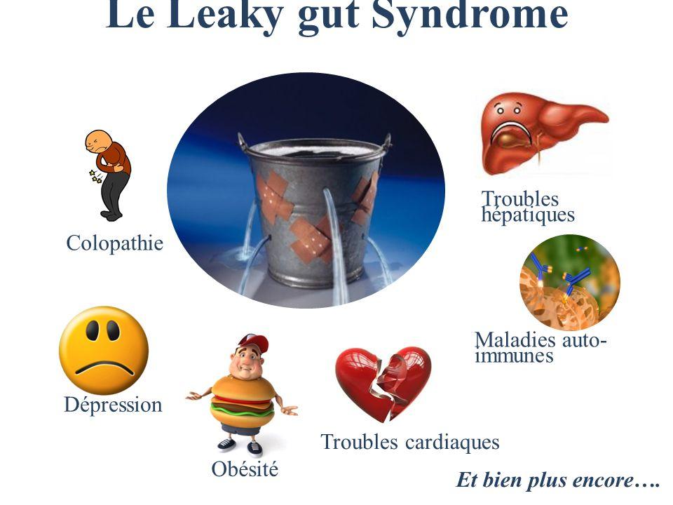 Le Leaky gut Syndrome Dépression Obésité Colopathie Troubles hépatiques Troubles cardiaques Maladies auto- immunes Et bien plus encore….
