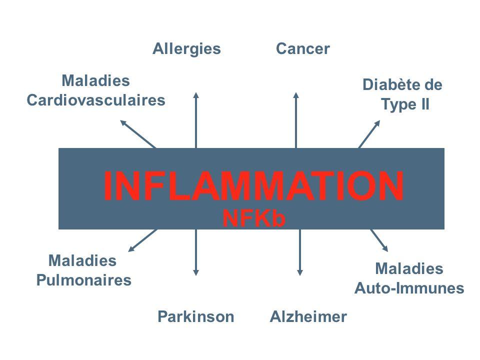 INFLAMMATION NFKb Cancer Maladies Cardiovasculaires Alzheimer Diabète de Type II Maladies Auto-Immunes Allergies Parkinson Maladies Pulmonaires