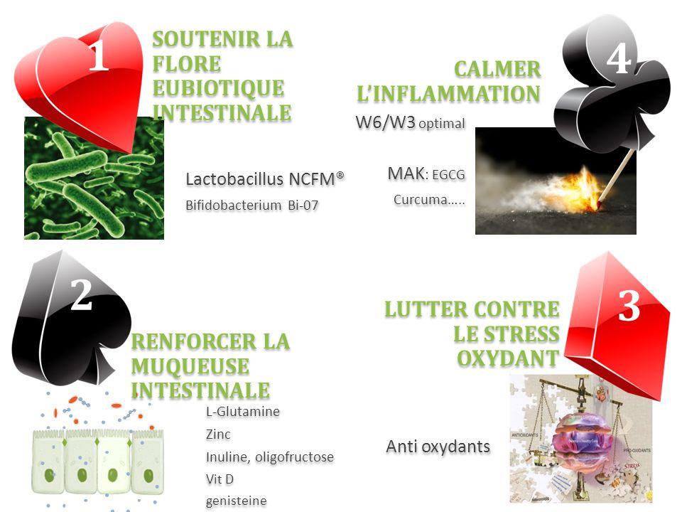 W6/W3 optimal MAK : EGCG Curcuma….. W6/W3 optimal MAK : EGCG Curcuma….. Lactobacillus NCFM® Bifidobacterium Bi-07 Lactobacillus NCFM® Bifidobacterium