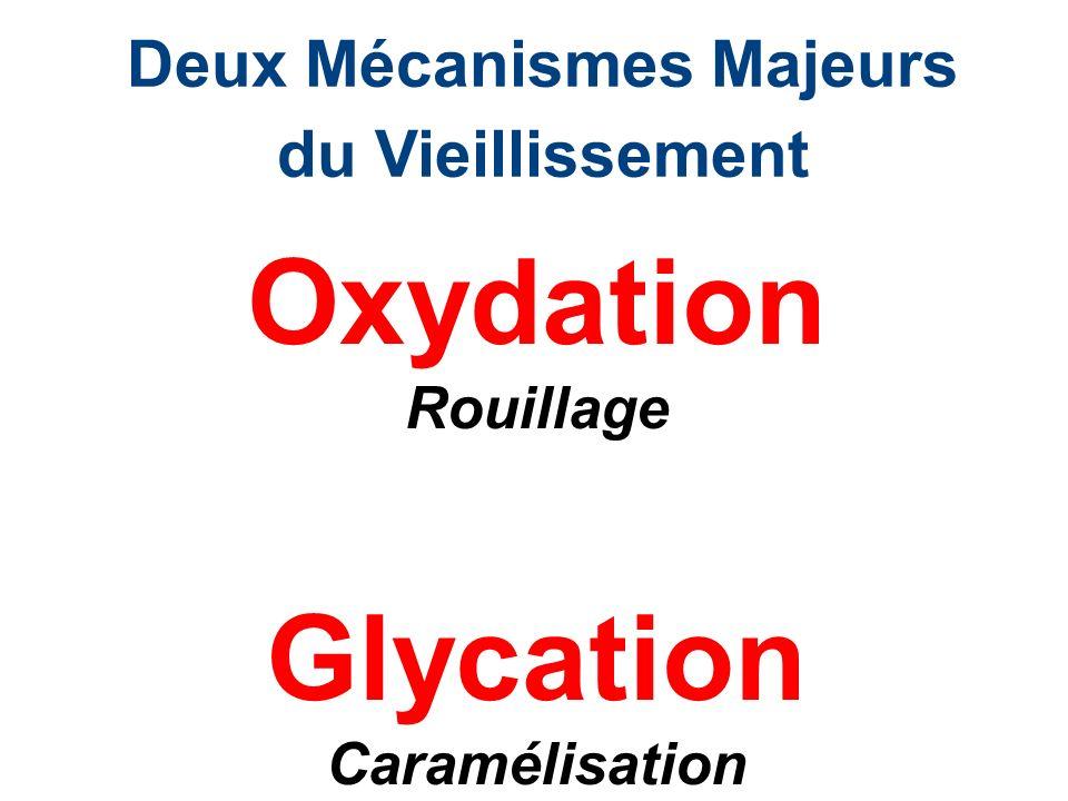 2.Bilan Nutritionnel Vitamine D Evaluation du Tube Digestif: IGG /MOU Nutribilan (acides gras, Zn, CU,SE…) Contrôle Nutritionnel