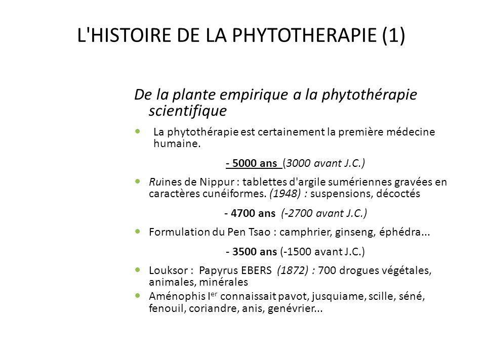 L HISTOIRE DE LA PHYTOTHERAPIE (2) -2400 ans (-400 avant J.C.) HIPPOCRATE, père de la médecine , consacra son existence à l étude de la thérapeutique par les plantes : Corpus Hippocraticum (250 simples : séné, romarin, olivier...