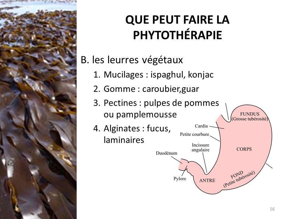 QUE PEUT FAIRE LA PHYTOTHÉRAPIE B. les leurres végétaux 1.Mucilages : ispaghul, konjac 2.Gomme : caroubier,guar 3.Pectines : pulpes de pommes ou pampl